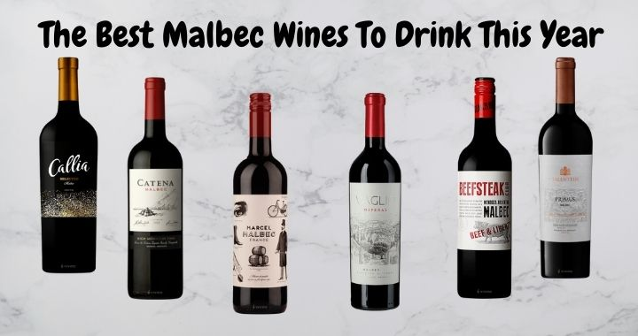 The Best Malbec Wines To Drink This Year