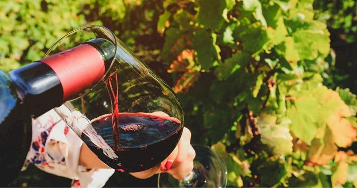Finest Details of Wine Testing in 8 Steps